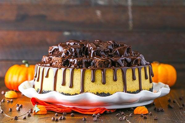 horizontal image of chunkin chocolate pumpkin cheesecake