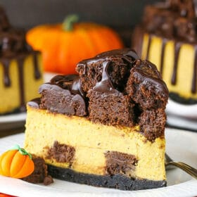 slice of chunkin chocolate pumpkin cheesecake