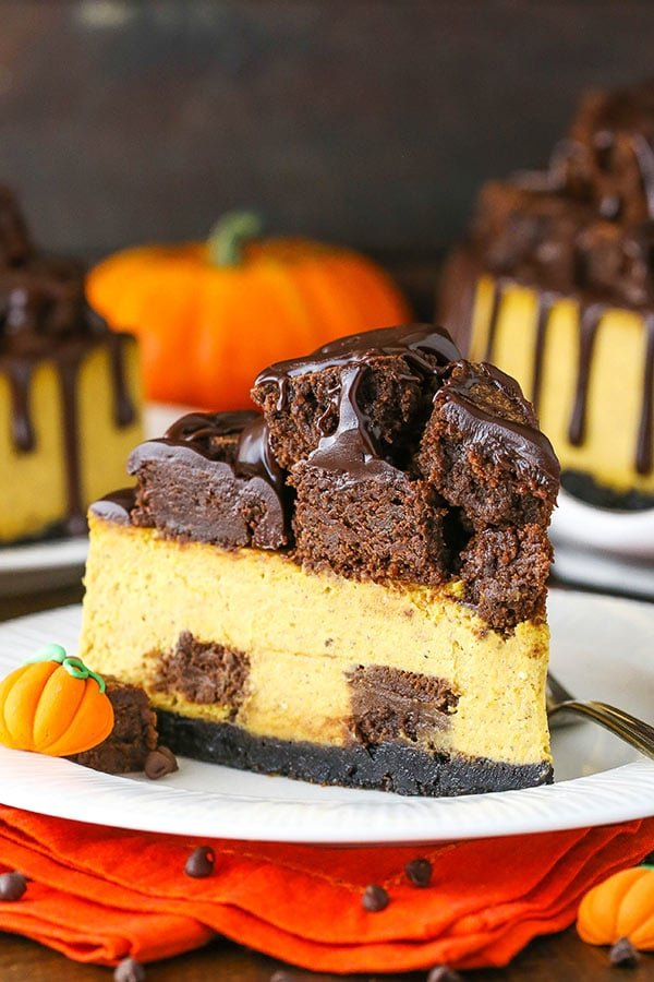 slice of chunkin chocolate pumpkin cheesecake
