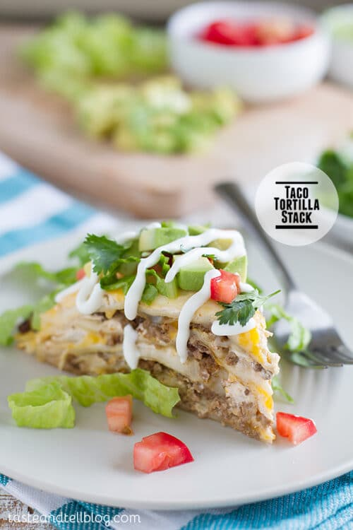 A Colorful Taco Tortilla Stack on a Plain White Plate