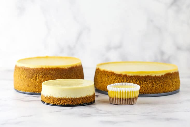 side image of 7 inch, 6 inch, 4 inch and mini cheesecake for comparison