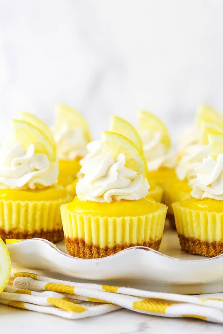 Several bite-sized lemon cheesecakes on a white serving dish topped with whipped cream