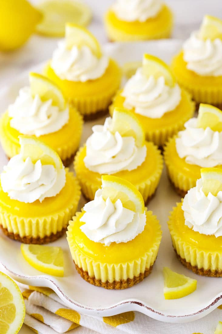 Overhead view of mini lemon cheesecakes topped with whipped cream on a white plate