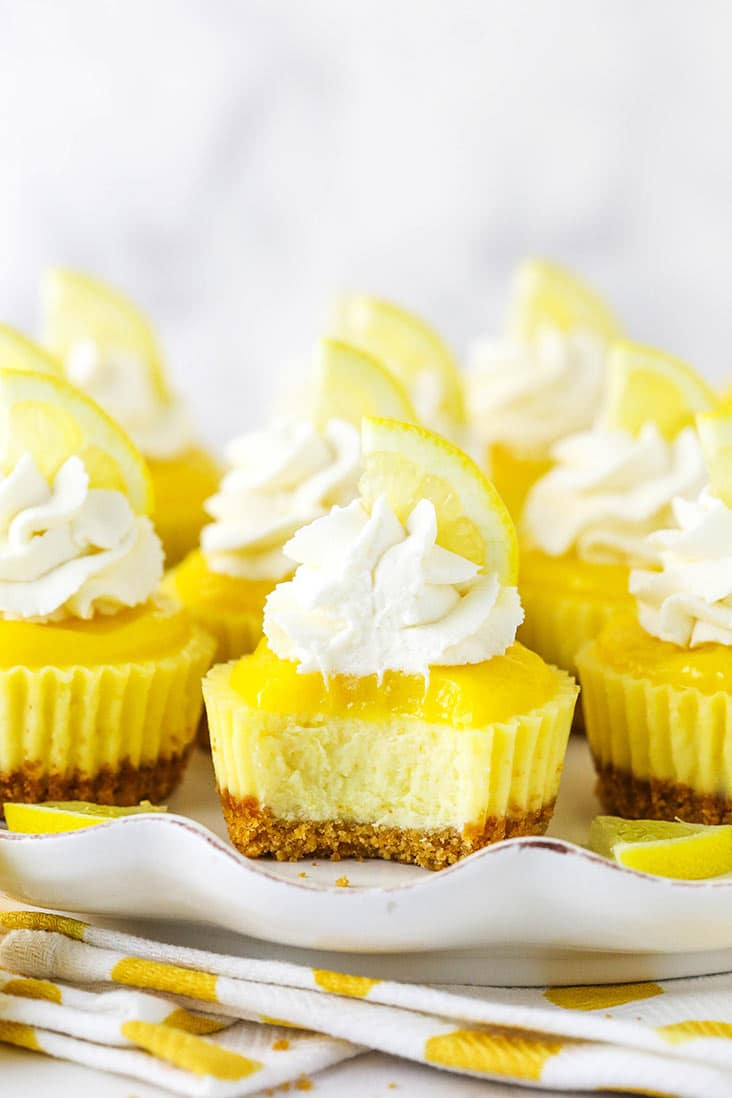 Mini lemon cheesecakes on a plate, with a bite missing from one
