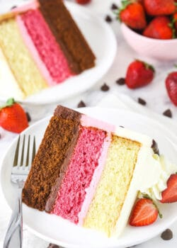A piece of chocolate, strawberry and vanilla layer cake with a second piece behind it